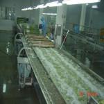 Máy rửa thực phẩm kiểu bọt nước QXJ-L